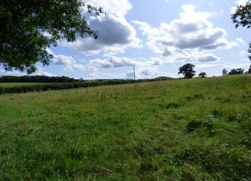 Land for sale in Trefnanney, Meifod SY22