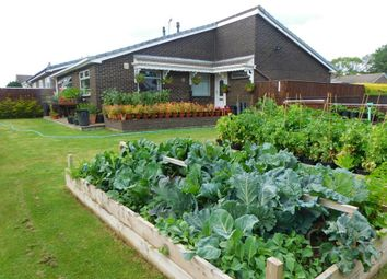Thumbnail 3 bed detached bungalow for sale in Baysdale Gardens, Shildon, County Durham