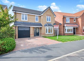 Thumbnail 4 bed detached house to rent in Oakview Gardens, Morton, Alfreton