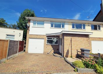 Thumbnail 3 bed semi-detached house for sale in Primrose Hill, Chelmsford, Essex