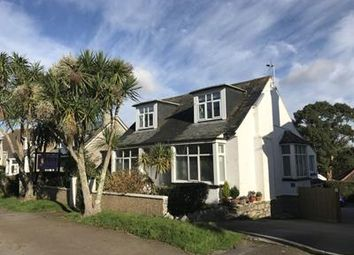 Thumbnail Hotel/guest house for sale in Oasis Guest House, 13 Dracaena Avenue, Falmouth, Cornwall