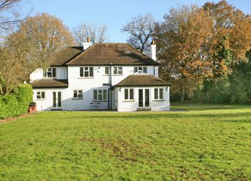 Thumbnail 5 bed detached house to rent in Horsham Road, Cranleigh, Surrey