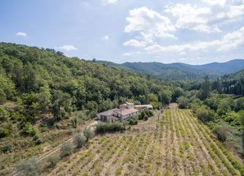Thumbnail 7 bed villa for sale in Les-Mayons, Var, France