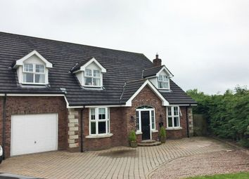 Thumbnail 7 bed detached house for sale in Old Lurgan Road, Portadown, Craigavon, County Armagh