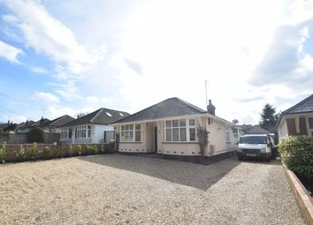 Thumbnail 2 bed detached bungalow to rent in Barton Hill, Fornham St. Martin, Bury St. Edmunds