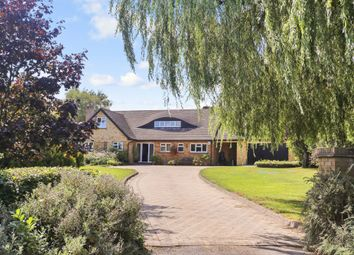 Thumbnail 6 bed detached house for sale in Little Bull Lane, Waltham Chase, Southampton