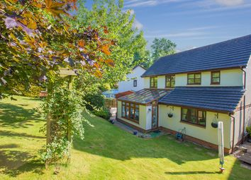 Thumbnail 4 bed detached house for sale in Barn Owl Close, The Willows, Torquay