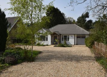 Thumbnail 4 bed bungalow for sale in The Shrave, Four Marks, Alton, Hampshire