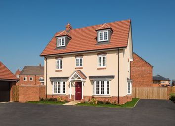"Thumbnail 4 bedroom detached house for sale in ""Hertford"" at Ripley Link, Great Denham, Bedford"