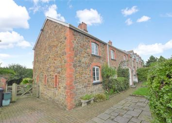 Thumbnail 4 bed semi-detached house for sale in Meeth, Okehampton