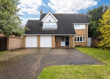 Thumbnail 4 bed property to rent in Ascham Lane, Cambridge