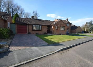 Thumbnail 3 bed detached bungalow for sale in Oaklea, Honiton, Devon