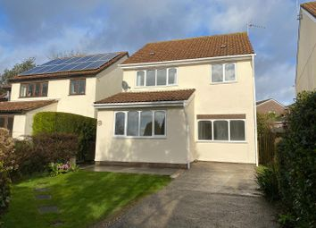 Thumbnail 4 bed detached house to rent in Dawlish Close, Newton, Swansea