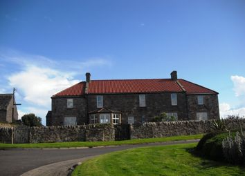 Thumbnail 2 bed semi-detached house to rent in Crail, Anstruther
