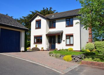 Thumbnail 4 bed property for sale in Freshwater Drive, Paignton