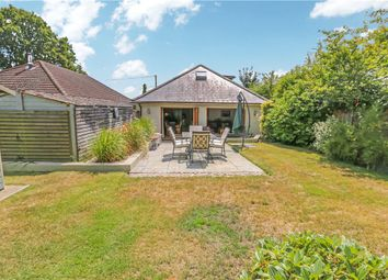 Thumbnail 3 bed detached house for sale in The Prophets, Newtown Road, Awbridge, Romsey