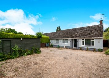 Thumbnail 3 bedroom semi-detached bungalow for sale in Hollow Road, Bury St. Edmunds