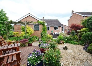 Thumbnail 3 bed detached bungalow for sale in Berrycroft, Berkeley
