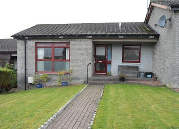 Thumbnail 1 bed bungalow for sale in Parkview Avenue, Falkirk, Stirlingshire
