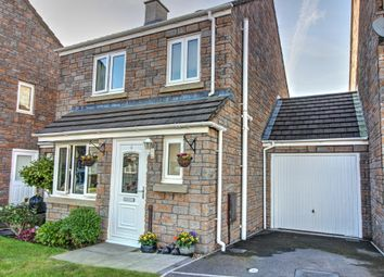 Thumbnail 3 bed detached house for sale in Hawkins Walk, Okehampton