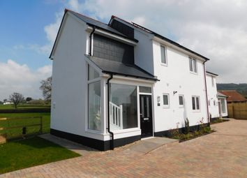 Thumbnail 4 bed detached house to rent in Whitford Road, Musbury, Axminster