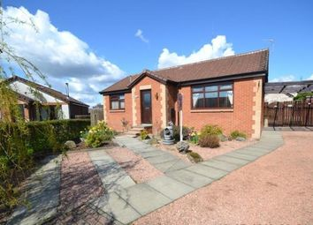 Thumbnail 2 bed detached bungalow to rent in Shielhill Park, Stanley, Perth