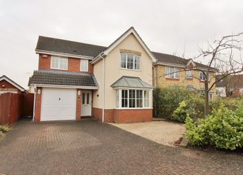 Thumbnail 4 bedroom detached house to rent in Dobbs Drift, Kesgrave, Ipswich
