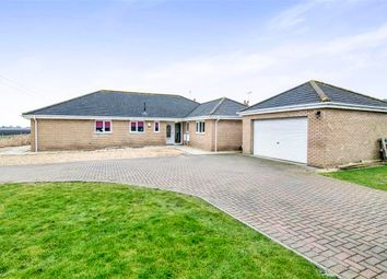 Thumbnail 4 bedroom detached bungalow for sale in March Road, Turves, Peterborough