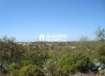 Thumbnail Land for sale in Vale Judeu, Loulé, Loulé Algarve
