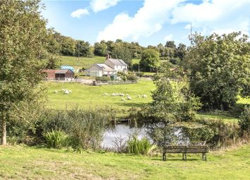 Thumbnail 4 bed equestrian property for sale in Wilmington, Honiton, Devon