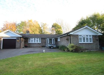 Thumbnail 3 bed detached bungalow for sale in Snatts Road, Uckfield