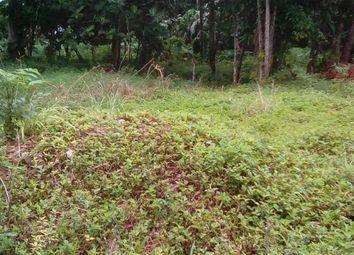 Thumbnail Land for sale in Ocho Rios, St Ann, Jamaica