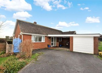 Thumbnail 3 bedroom detached bungalow for sale in Foxholes Hill, Exmouth, Devon