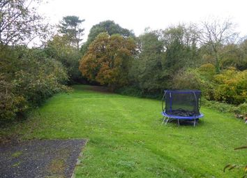Thumbnail Property for sale in Bodieve, Wadebridge, Cornwall