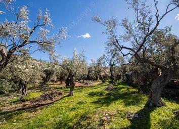 Thumbnail Land for sale in Lefokastro, Pilio, Greece