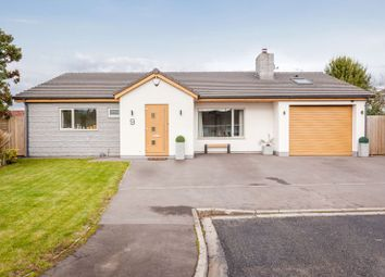 Thumbnail 4 bed bungalow for sale in Woodland Close, Failand, Bristol