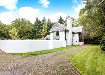 Thumbnail 3 bed detached house to rent in London Road, Windlesham, Surrey