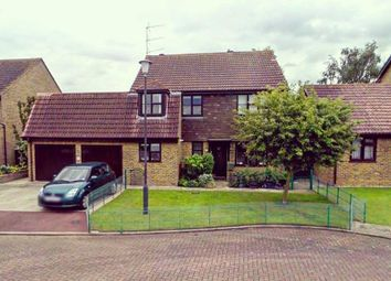 Thumbnail 5 bed property to rent in Heron Close, Lower Halstow, Sittingbourne