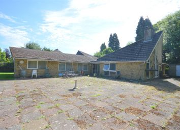 Thumbnail 5 bed detached bungalow for sale in The Chase, Kingswood, Tadworth