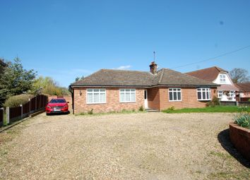 Thumbnail 4 bed detached bungalow for sale in Maldon Road, Tiptree, Colchester
