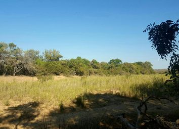 Thumbnail Land for sale in Hoedspruit, 1380, South Africa
