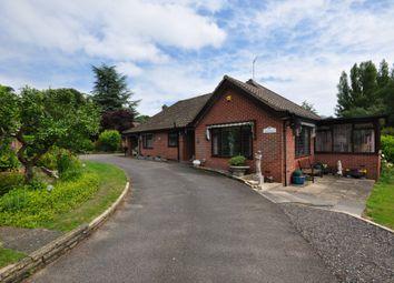 Thumbnail 3 bed detached bungalow for sale in Ipswich Road, Newton Flotman, Norwich