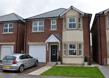 Thumbnail 4 bed detached house for sale in South Gables, Haydon Bridge