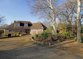 Thumbnail 4 bedroom bungalow for sale in Shermanbury Grange, Brighton Road, Horsham, West Sussex