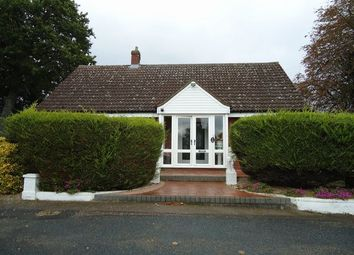 Thumbnail 3 bed bungalow to rent in Braiswick, Colchester, Essex