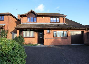 Thumbnail 4 bed detached house to rent in Thistle Down, Colchester, Essex