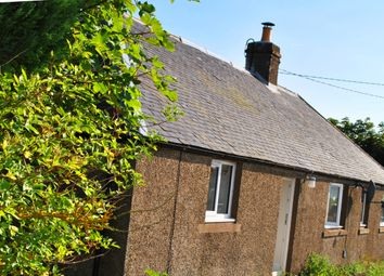 Thumbnail 1 bed cottage to rent in Brechin