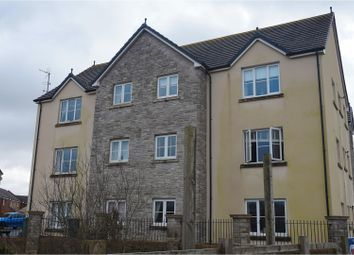 Thumbnail 2 bedroom flat for sale in Rhodfa'r Ceffyl, Kidwelly