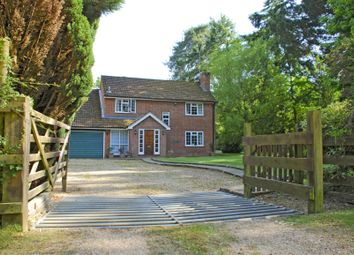 Thumbnail 4 bed detached house to rent in Brockenhurst, Hampshire