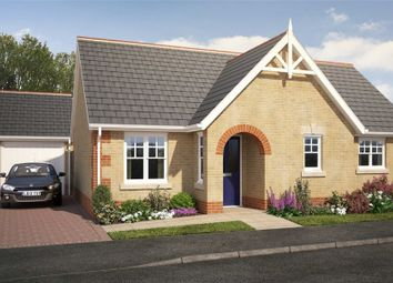 Thumbnail 2 bedroom detached bungalow for sale in Plot 203 Edgecomb Park, Stowmarket, Suffolk